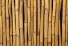 Molong Bamboo fencing 2