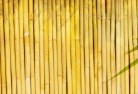 Molong Bamboo fencing 4